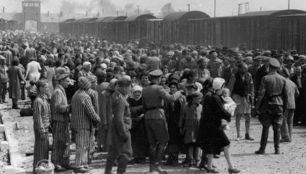 01-Hungarian-Jews-arriving-at-Auschwitz1