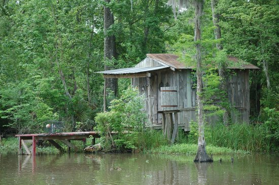 Abandoned-Cabin-Picture-Of-Jean-Lafitte-Swamp-Tours